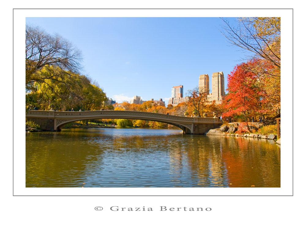 "Mostra online di Grazia Bertano ""Autumn in New York"" - 3. Indian summer in Central Park"