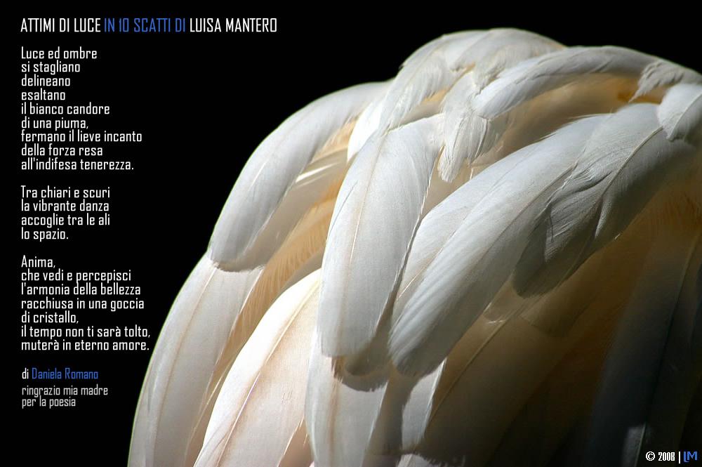 """Mostra online di Luisa Mantero """"Attimi di luce"""""""