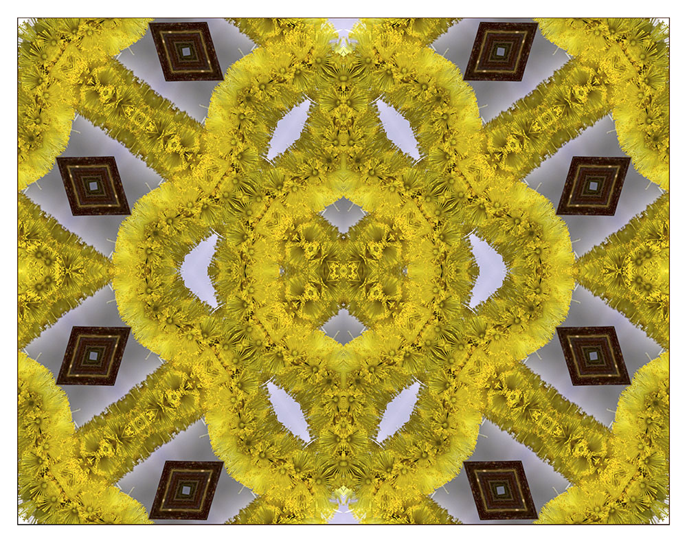 "Mostra online di Ombretta Ercolani ""Caleido Flowers"" – 10."