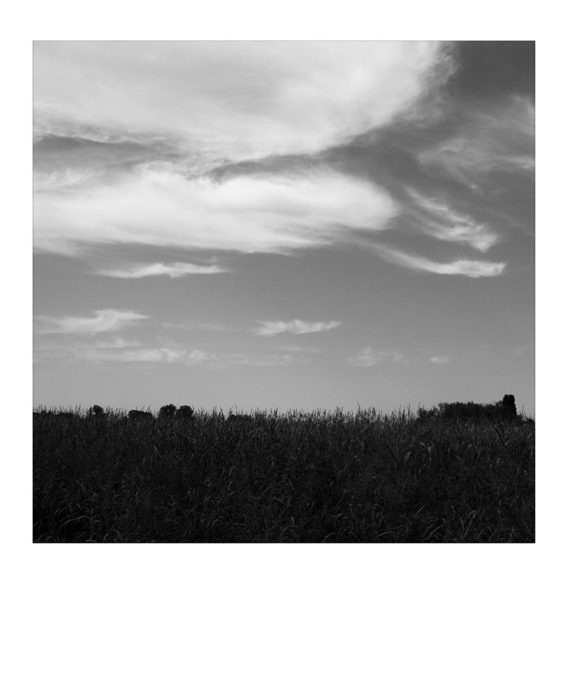 """Mostra online di Simona Carli: """"On the road"""" - 9."""