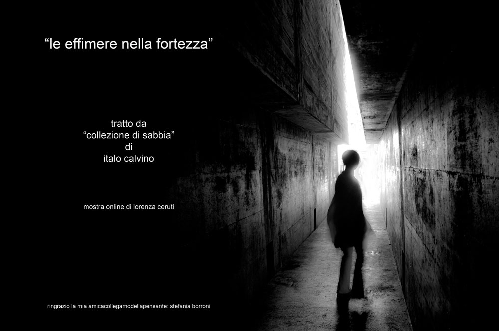 """Mostra online Lorenza Ceruti: """"Le effimere nella fortezza"""""""