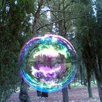 """Mostra online """"Ricordo di Ilaria Malerba"""" - 7. Tutto in una bolla di sapone"""