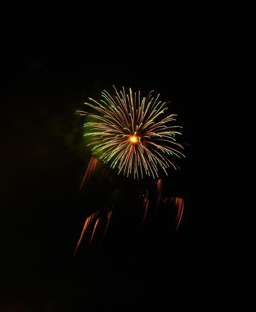 Mostro marino o fuochi d'artificio? 1