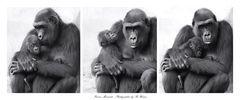 MOTHER & CHILD - Kathi & Anandi