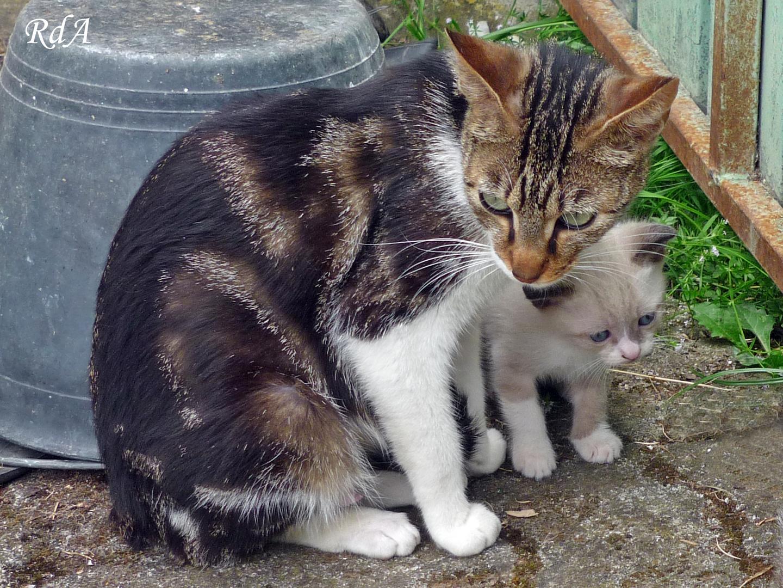 Mother & Son Portrait