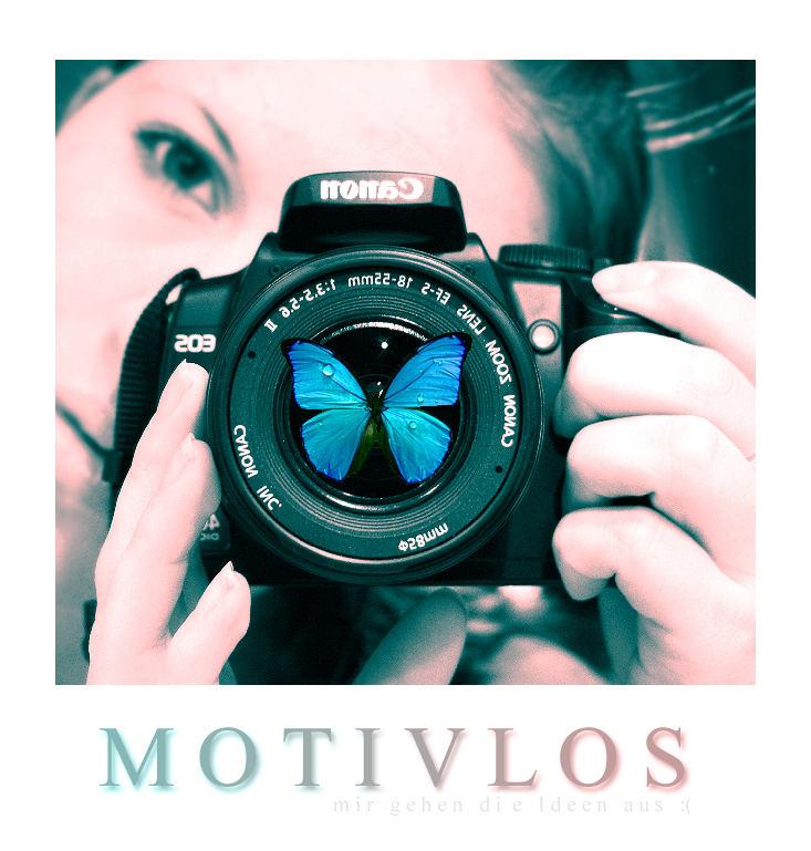 motivlos II