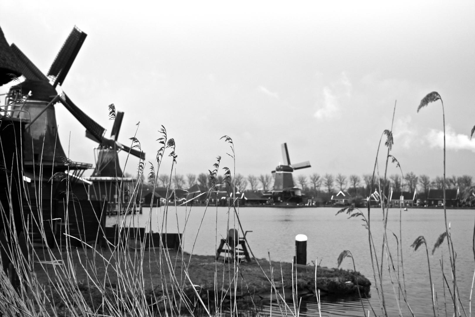 Moulins hollandais
