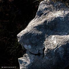 Mountain Rock 1/19