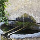 Mountain water 2 (Susa/Italy)