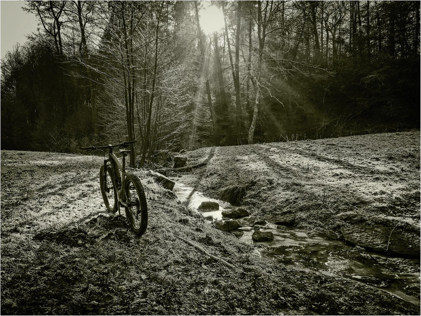 .... Mountainbike am Bach ....