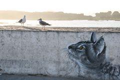 Mowen und Katze streetart maroc +2Fotos
