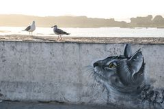 Mowen und Katze streetart maroc