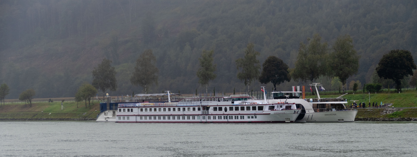 MS Normandie am Schiffsanleger Engelhartszell