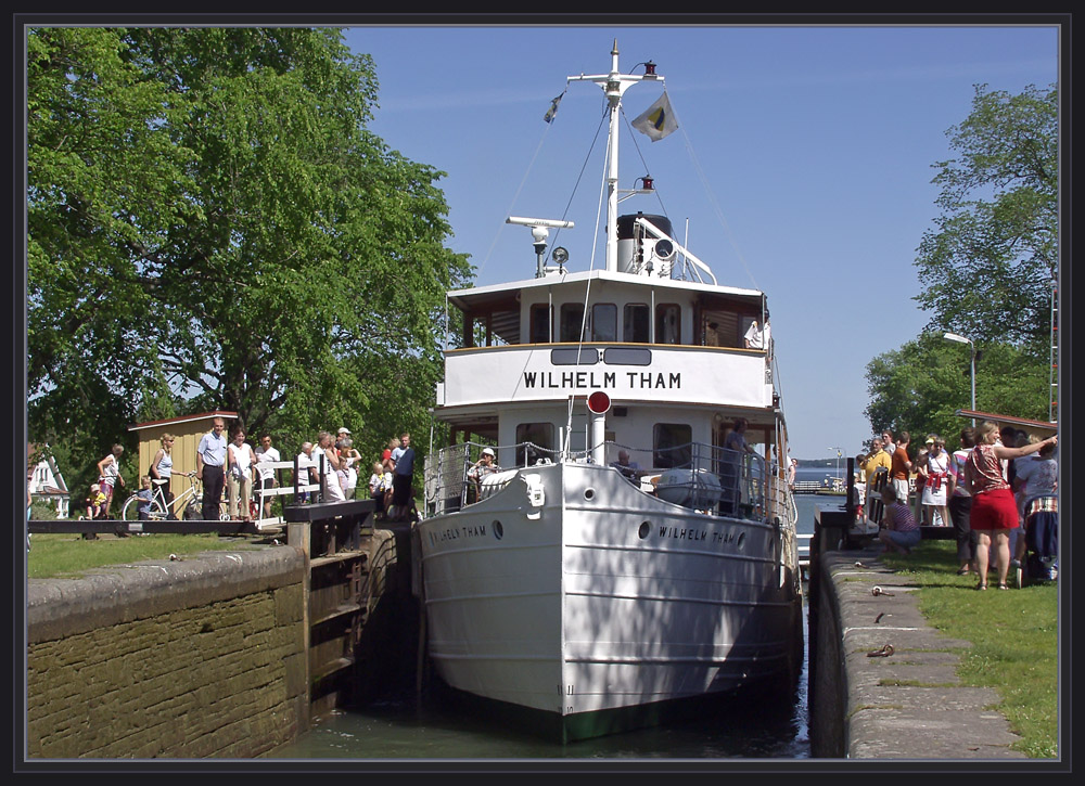 MS Wilhelm Tham 4