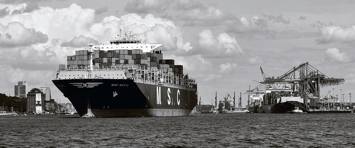 *MSC BERYL* monochrom - reloaded