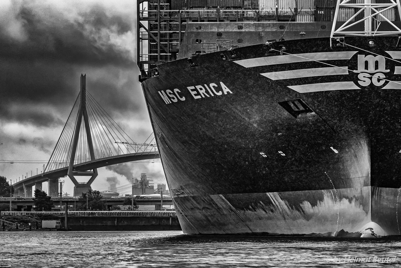 MSC ERICA @ Waltershofer Hafen Hamburg