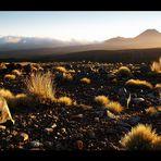 -Mt.Ngauruhoe-