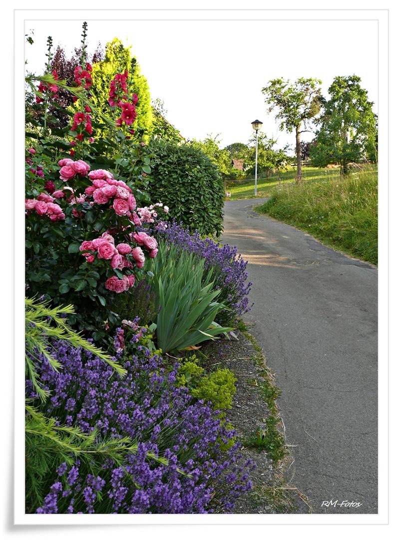 Mttwochsblümliweg