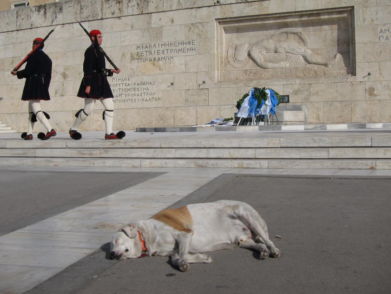 Müde vor dem Parlament