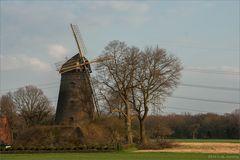 Mühle bei Schermbeck