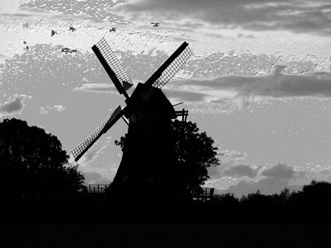Mühlen im wind