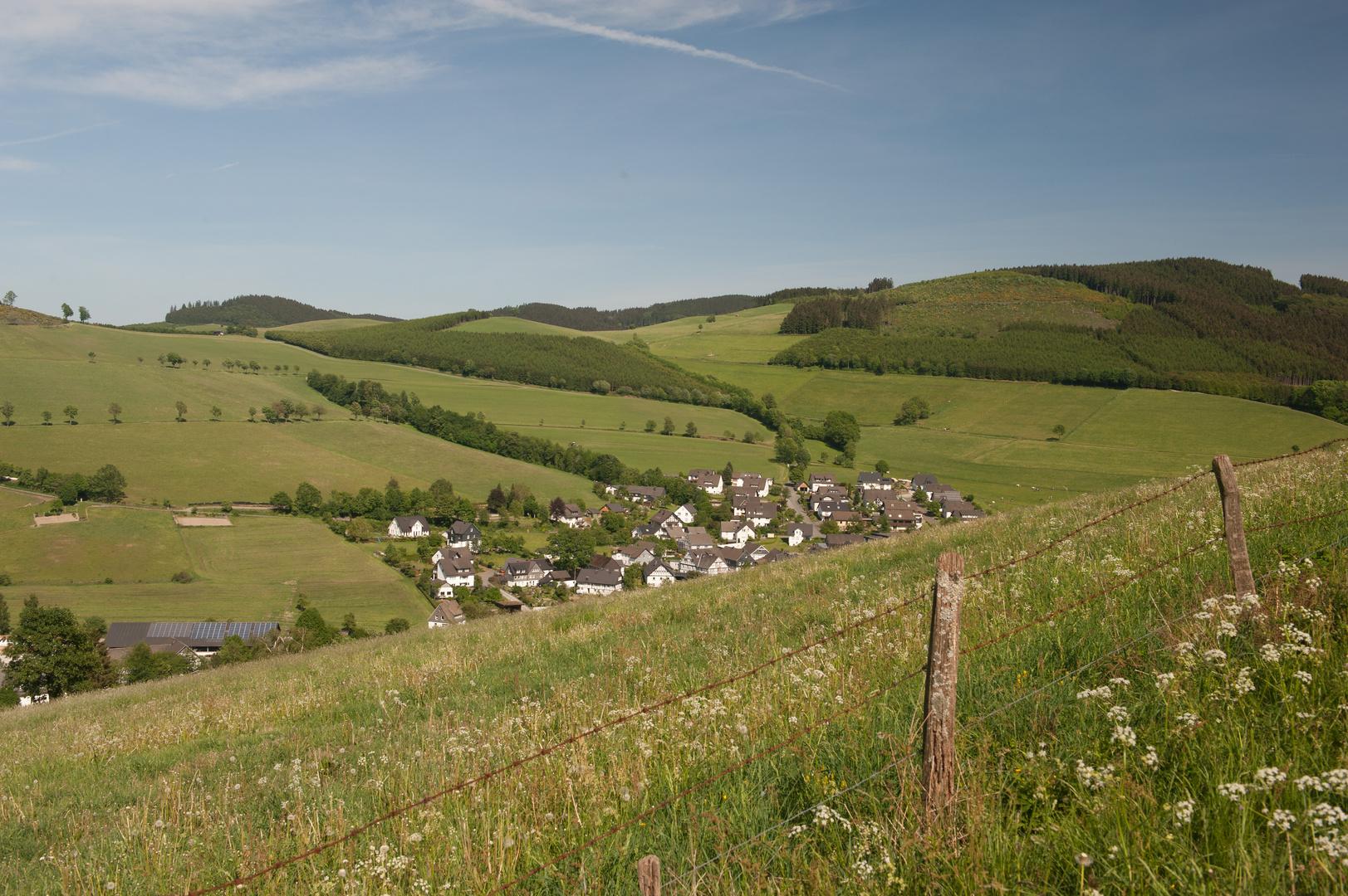 Mühlenberg - ( III.)
