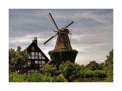 """Mühlenmuseum - Gifhorn """"Blick auf die Mühle Sanssouci """""""