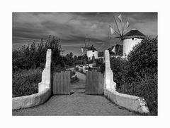 """Mühlenmuseum - Gifhorn """" Südländische Mühlen, umgeben von einer gärtnerischen Landschaftsidylle"""""""