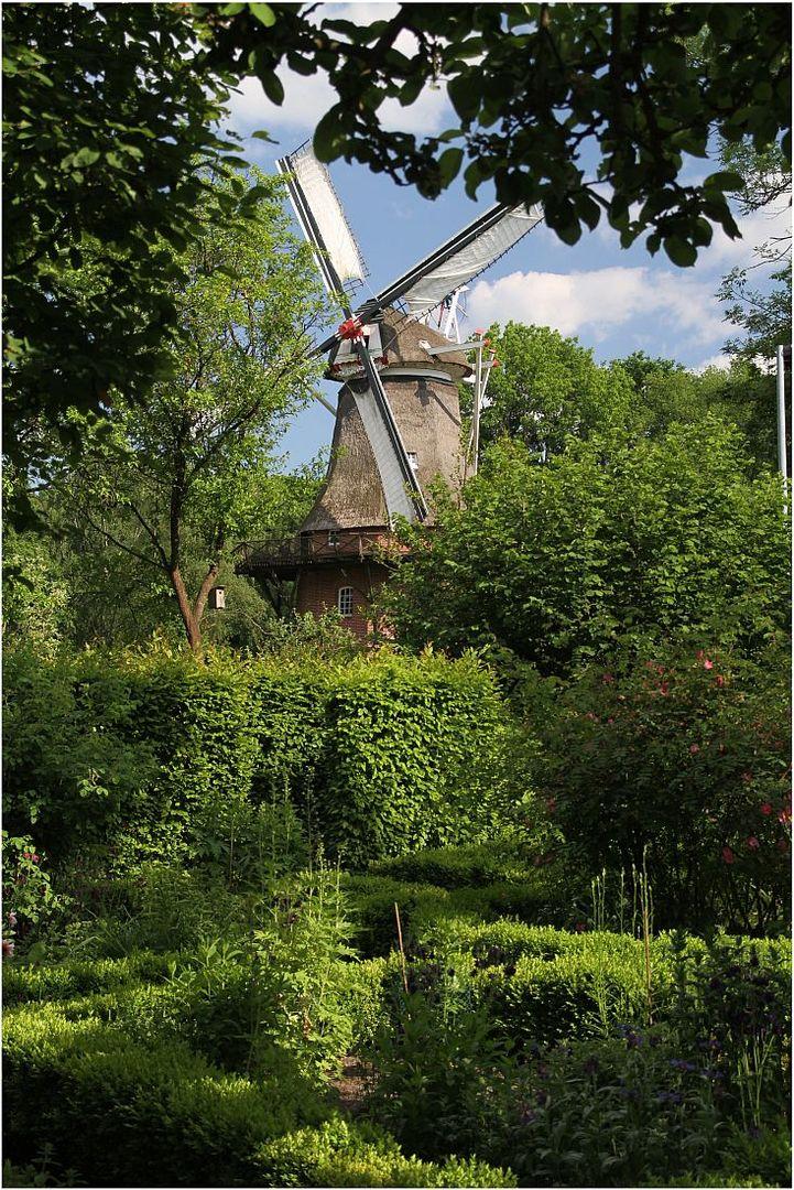 Mühlentag - Windmühle Bad Zwischenahn 2
