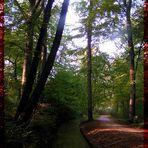 München: Englischer Garten