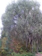 München Ostpark