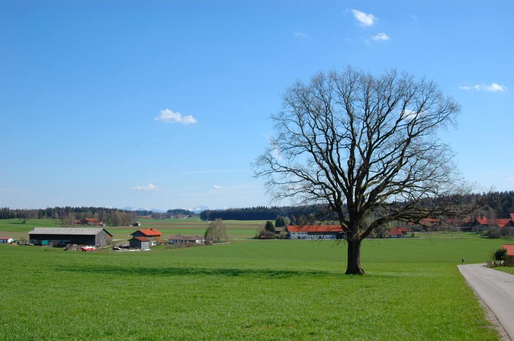 Münchner Land