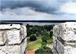 Mündung der Save in die Donau ...
