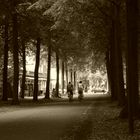 Münster, an der Promenade