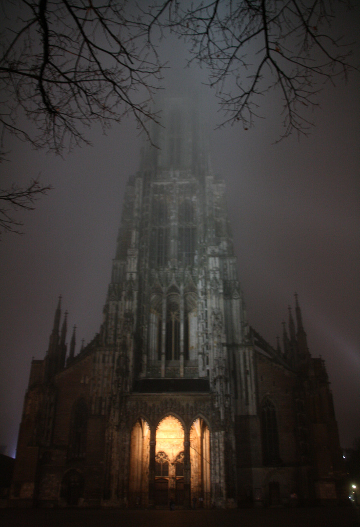Münster bei Nebel