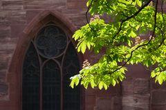 Münsterfenster