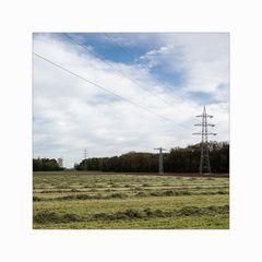 _muensterland
