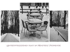 Münsters Promenade im Winter  (Reloaded)