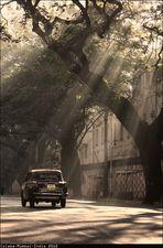 _Mumbai 2010_