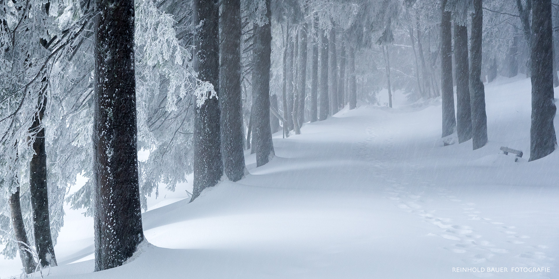 Mummelsee Winter