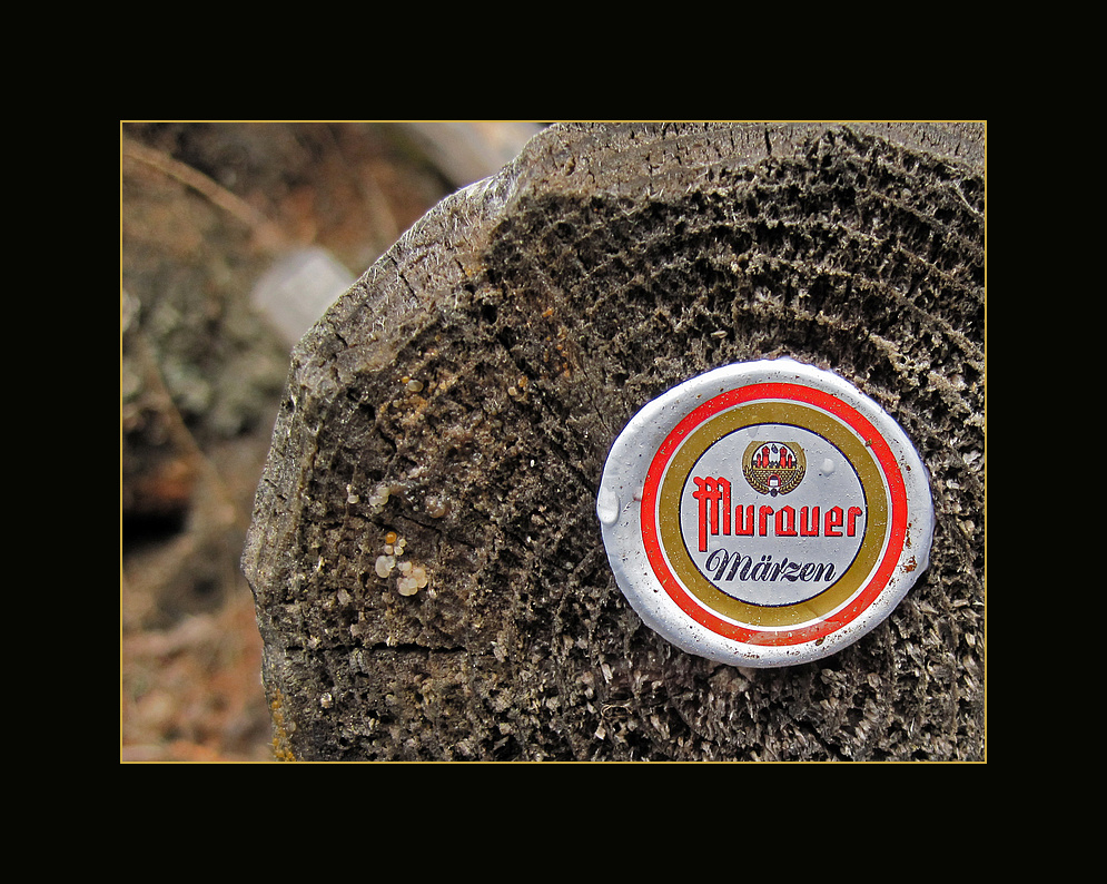 Murau-holzverbunden