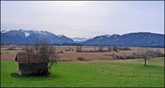 Murnauer Moos - Ostern 2010 - 7