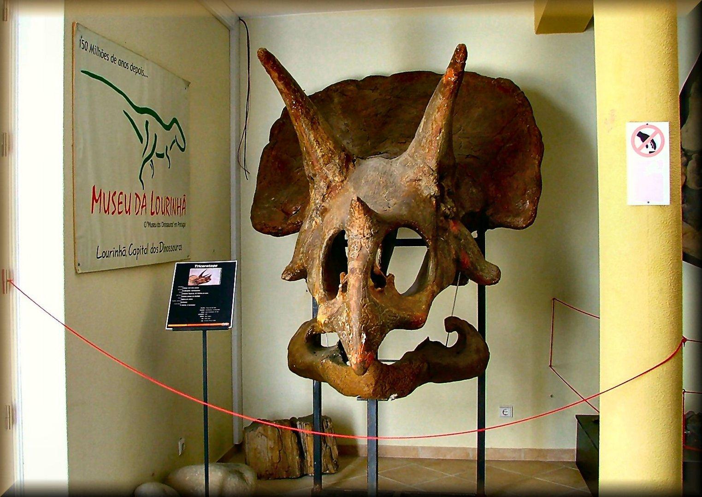 Museu da Lourinhã