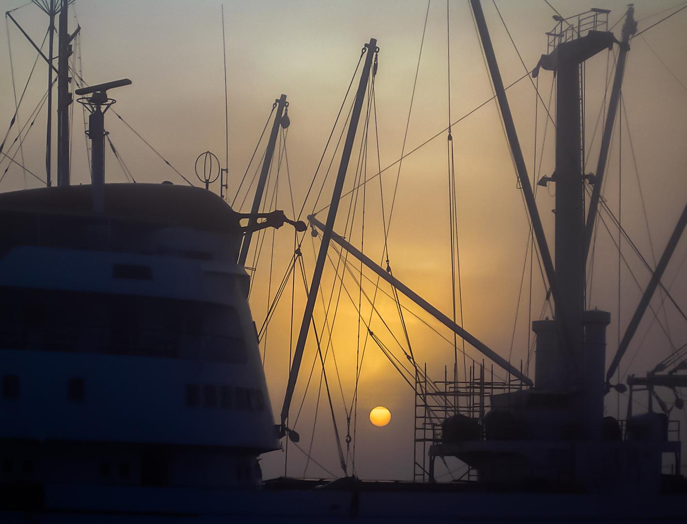 Museumsschiff Cap San Diego im Winternebel (Jan. 2005)