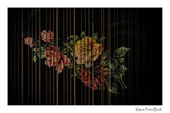 Musikalisch Blumengrüße.......