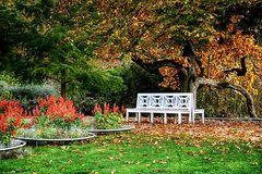 Muskauer Herbst
