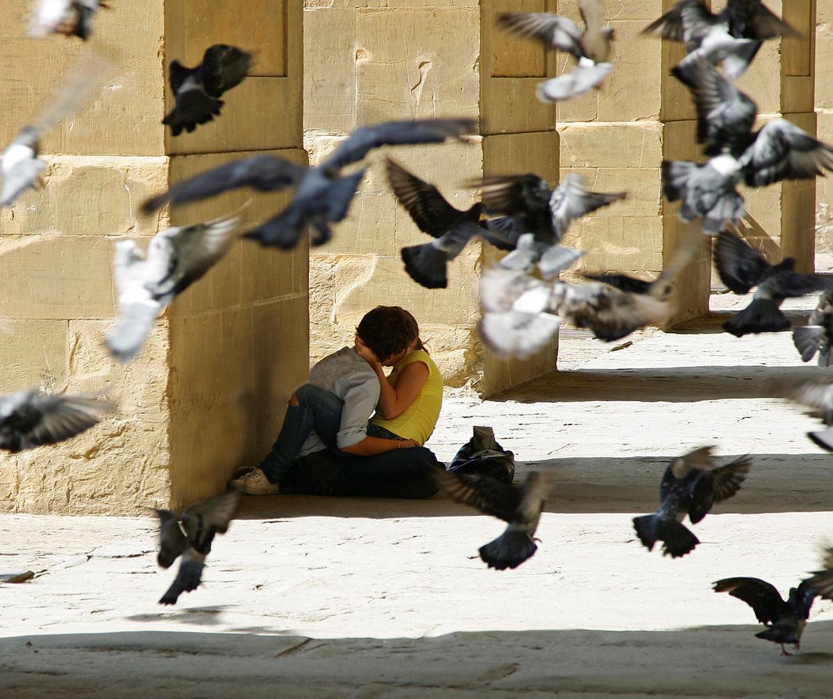 Muß Liebe schön sein - ein Sommer in Florenz