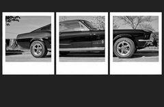 Mustang .