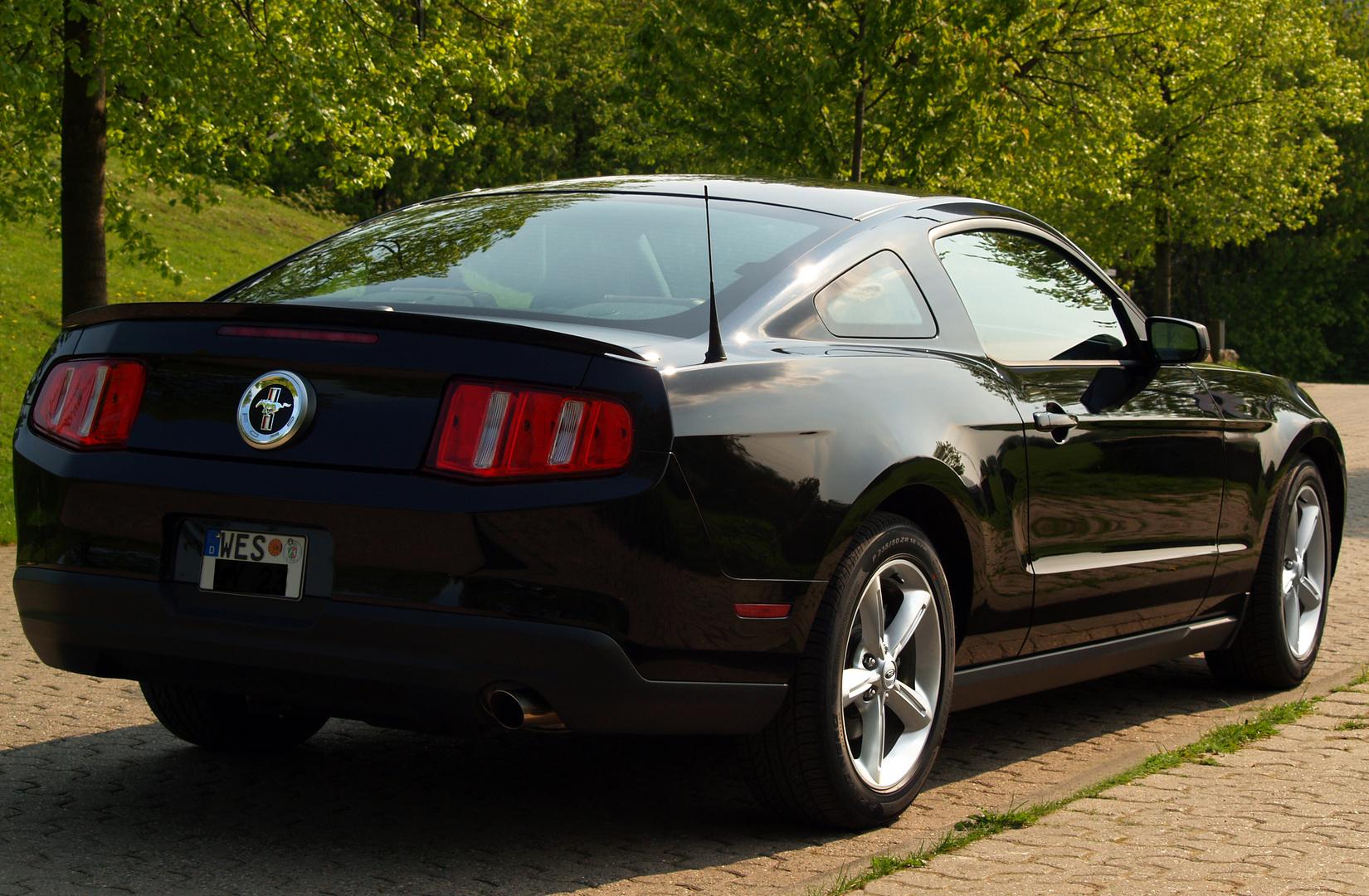 >>>> Mustang