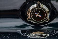 Mustang-detail